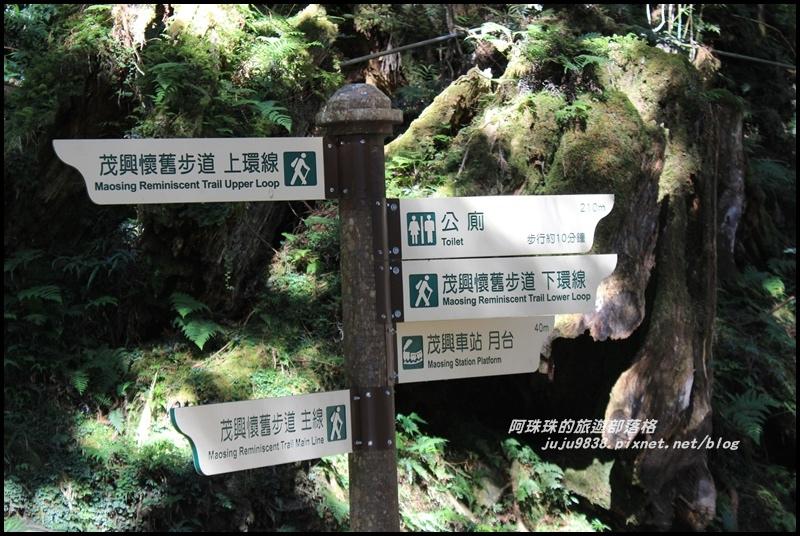 茂興懷舊古道16.JPG