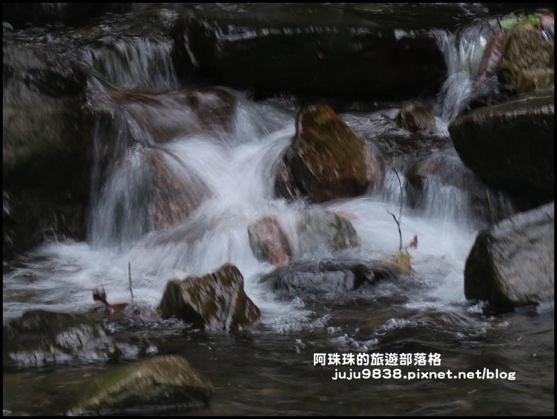 五峰旗瀑布6.JPG