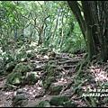 小粗坑石門山10.JPG