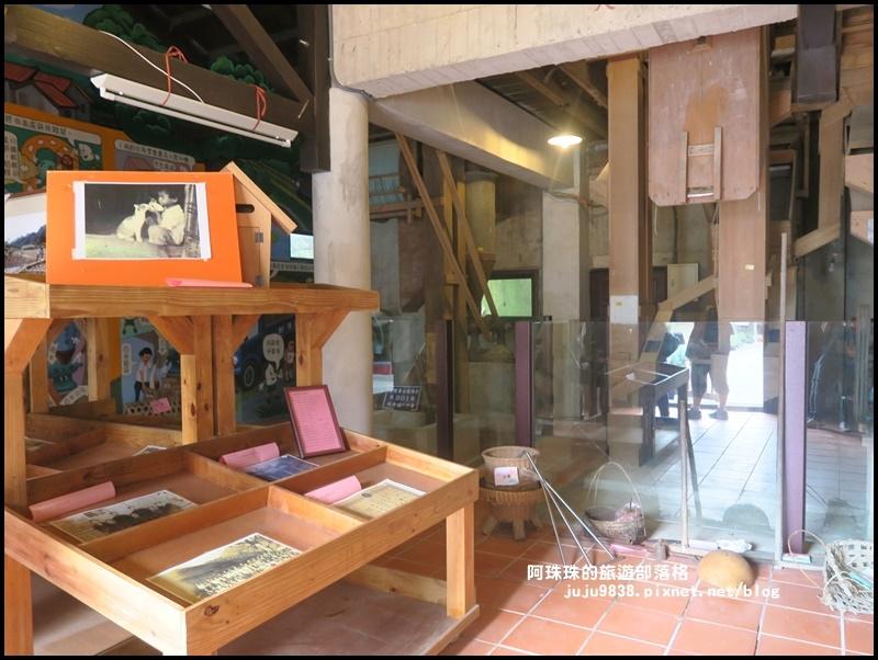 獅潭生態旅遊146.JPG