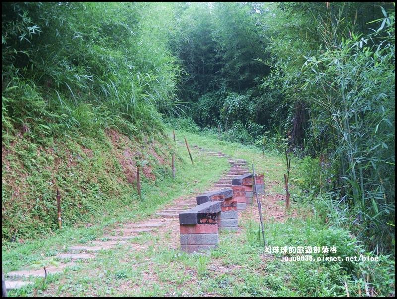 獅潭生態旅遊164.JPG