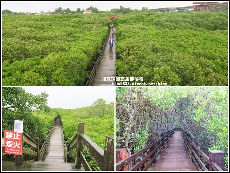 新豐紅樹林29