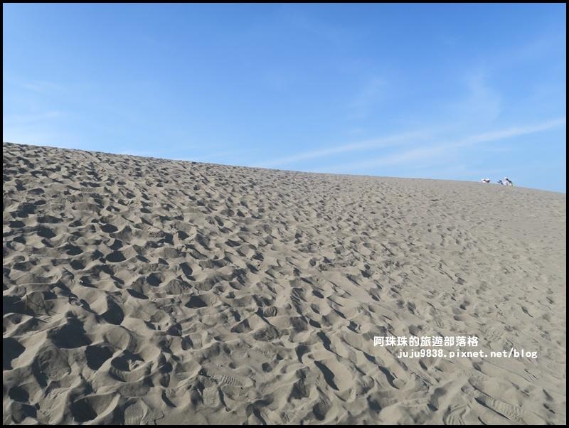 草漯沙丘4.JPG
