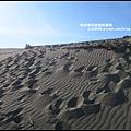 草漯沙丘2.JPG