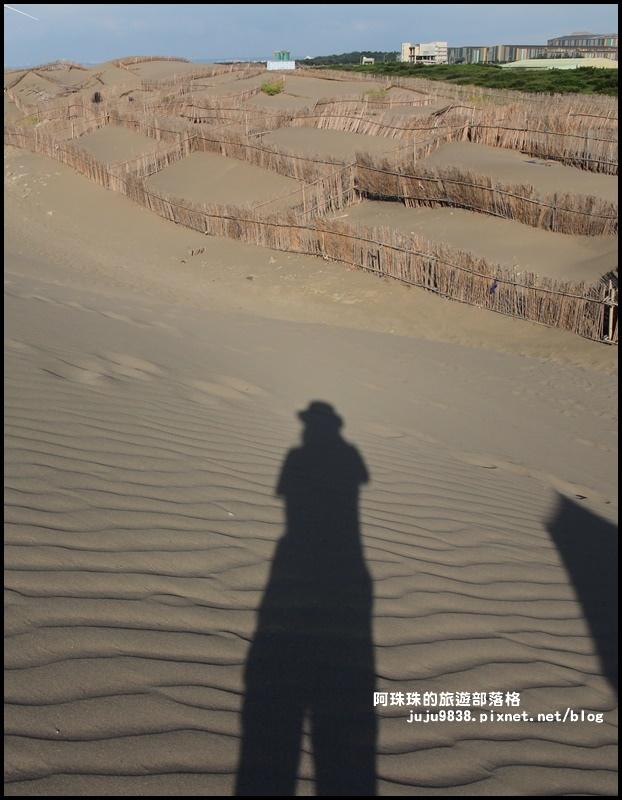 草漯沙丘23.JPG