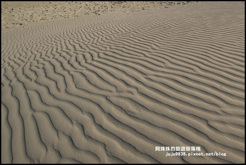 草漯沙丘24.JPG