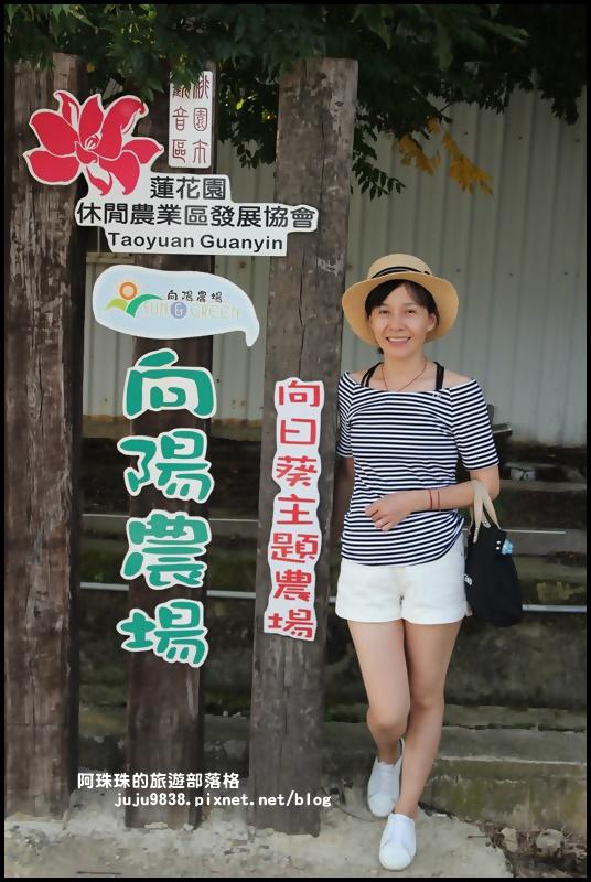 向陽農場1.JPG