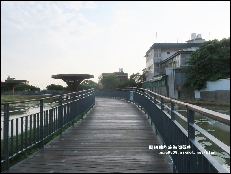 桃園蓮花季18.JPG