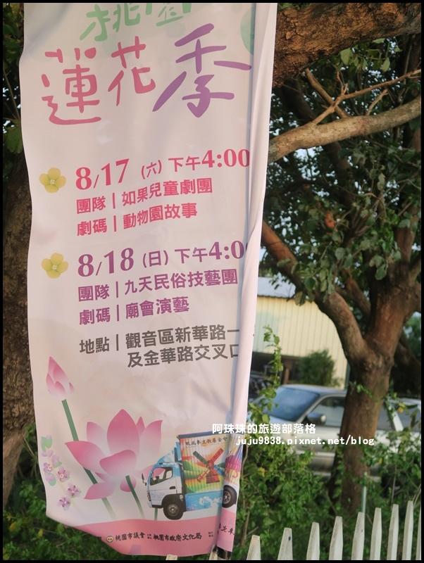 桃園蓮花季23.JPG