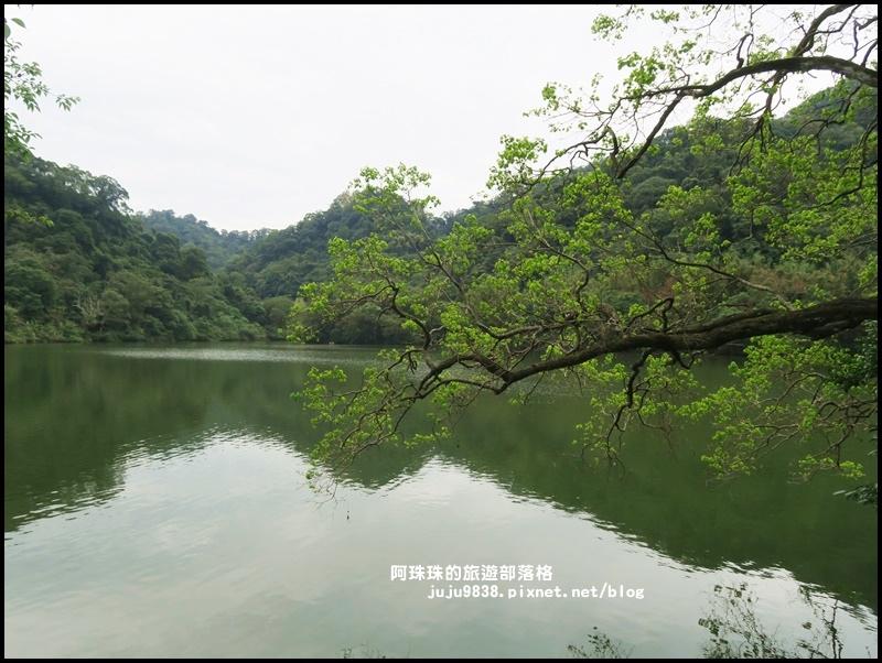 慈湖5.JPG