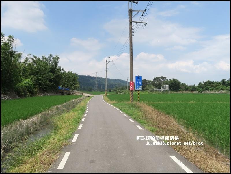 大溪韭菜花季2.JPG