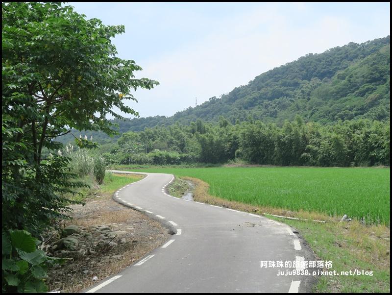 大溪韭菜花季13.JPG