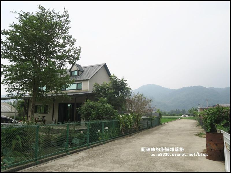 大溪韭菜花季29.JPG