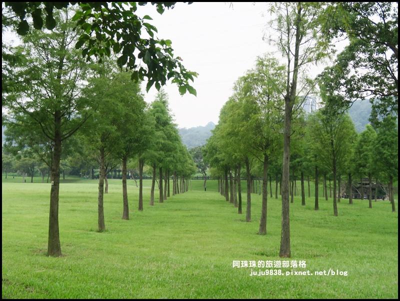 大溪河濱公園8.JPG