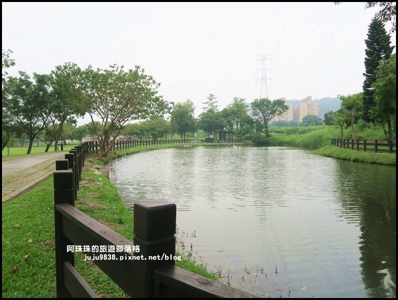 大溪河濱公園15.JPG