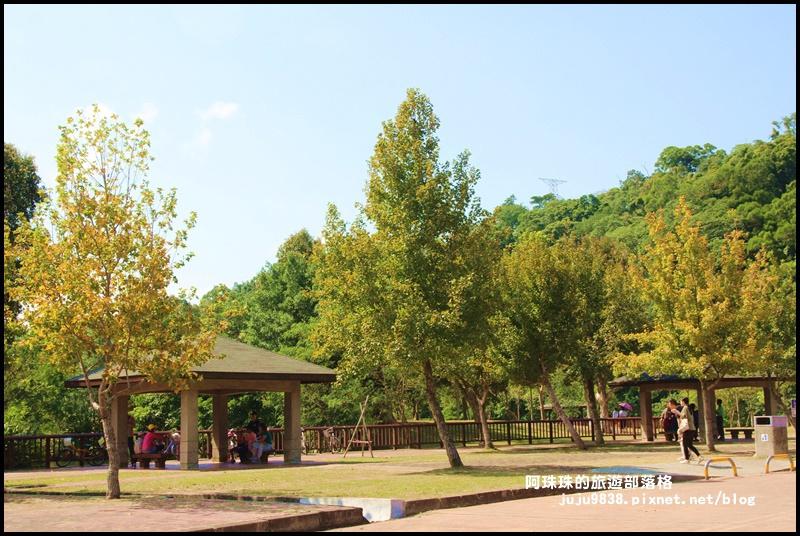 三坑生態公園24.JPG
