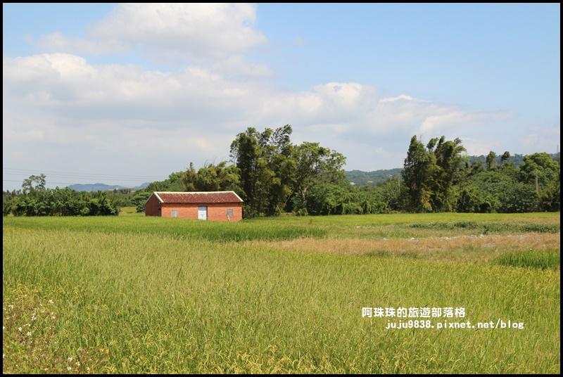 三坑生態公園31.JPG