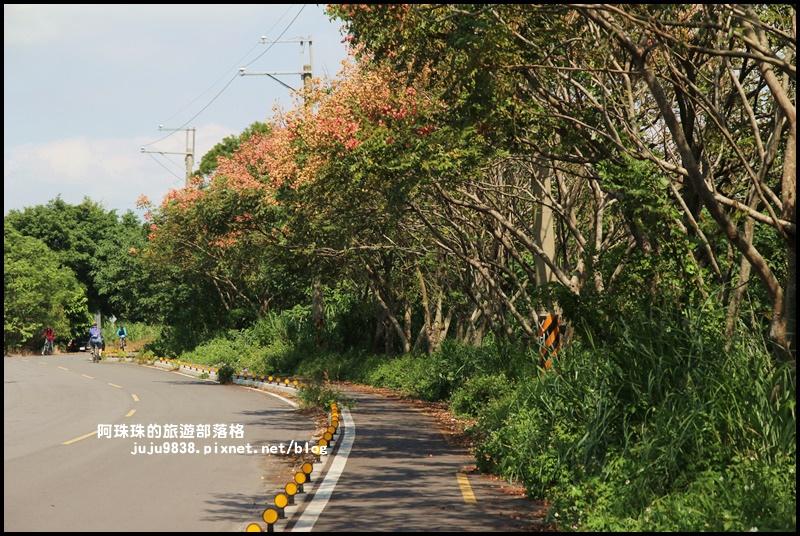 三坑生態公園29.JPG