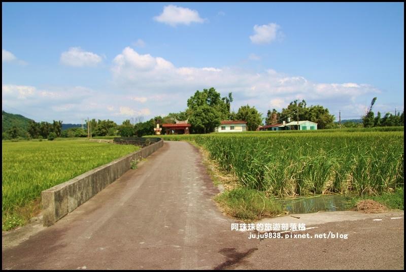 三坑生態公園33.JPG
