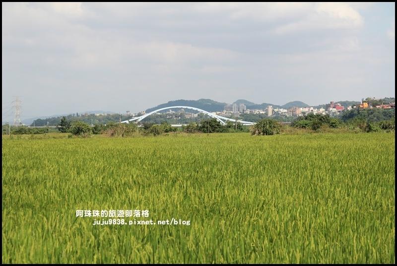 三坑生態公園38.JPG