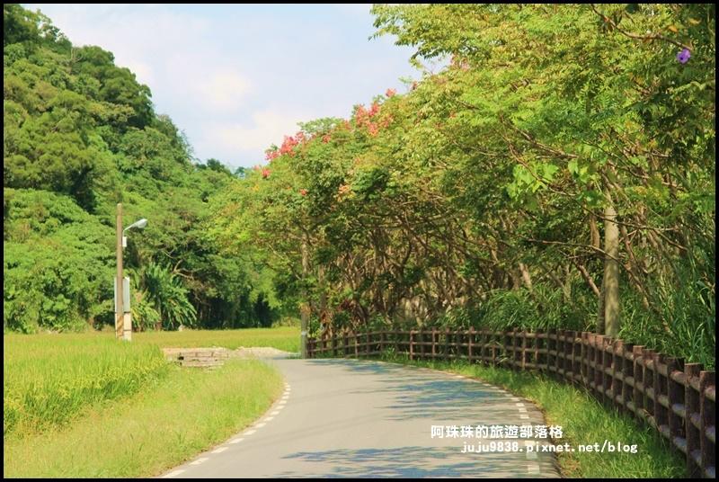 三坑生態公園39.JPG