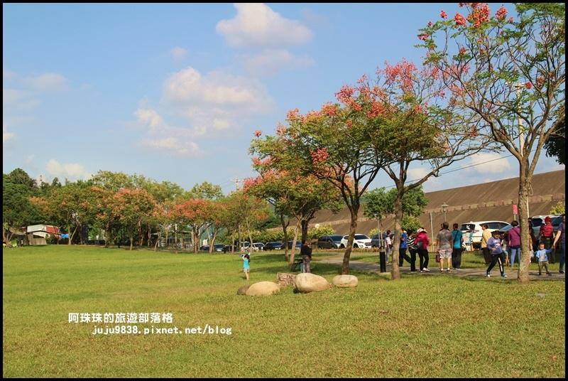 大溪河濱公園4.JPG