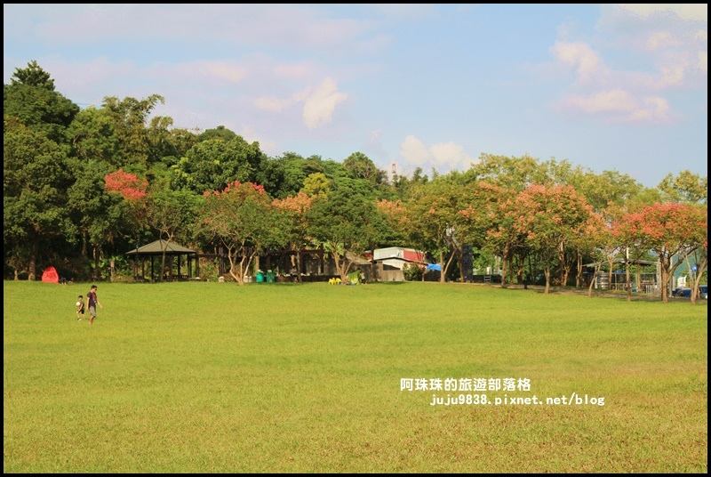 大溪河濱公園5.JPG