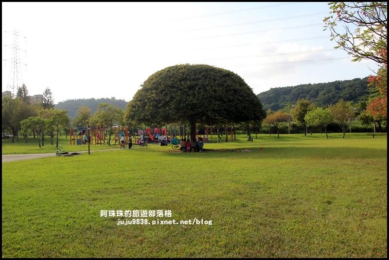 大溪河濱公園18.JPG