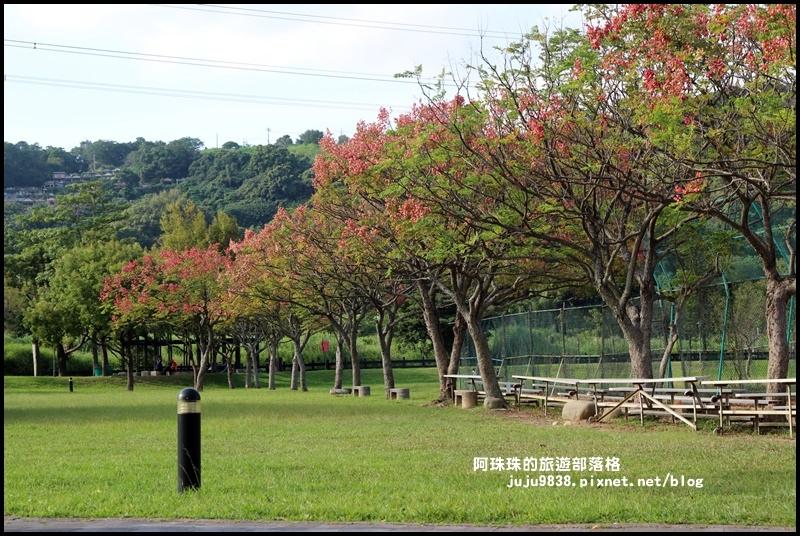 大溪河濱公園23.JPG