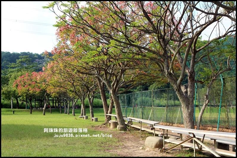大溪河濱公園19.JPG