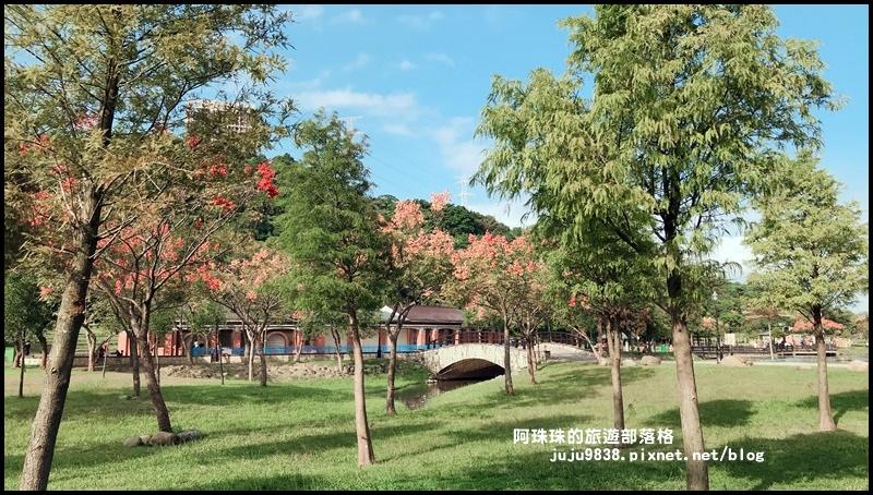 大溪河濱公園26.JPG