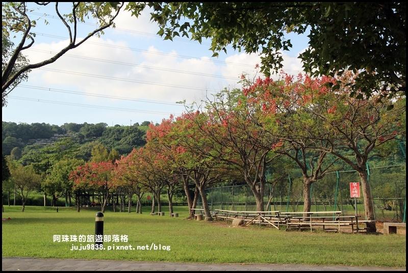 大溪河濱公園21.JPG