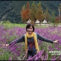 武陵農場Q3.jpg