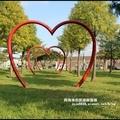 大溪河濱公園落羽松1.jpg