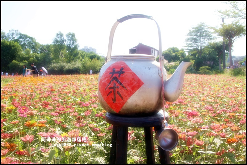 大溪花海16.JPG