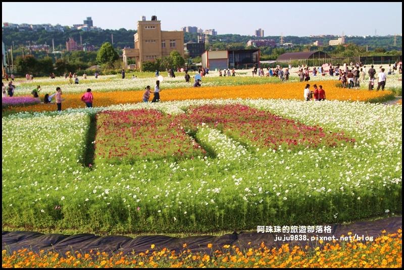 大溪花海56.JPG