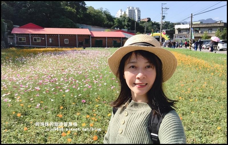 大溪花海70.JPG