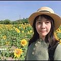 大溪花海72.JPG