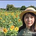 大溪花海71.JPG