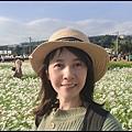 大溪花海78.JPG