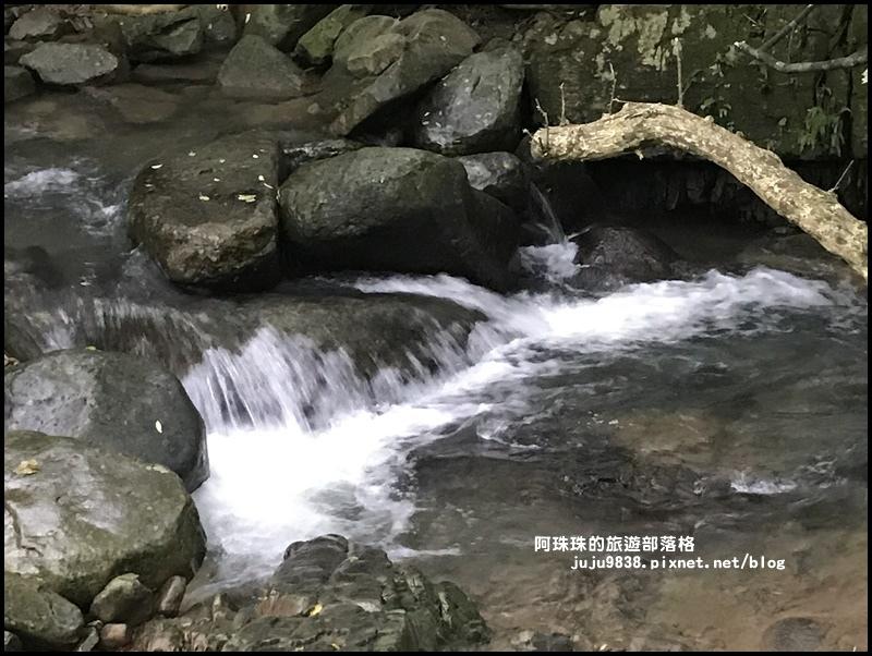 草嶺古道23.JPG