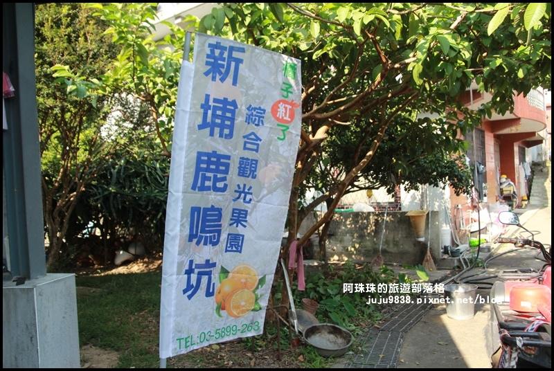 鹿鳴坑觀光果園2.JPG