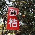 鹿鳴坑觀光果園3.JPG