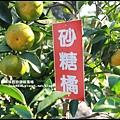 鹿鳴坑觀光果園23.JPG