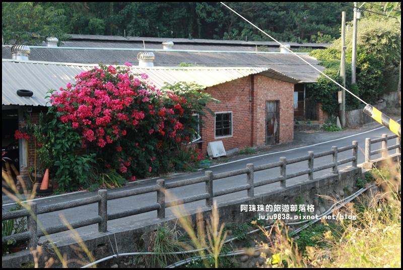 鹿鳴坑觀光果園46.JPG