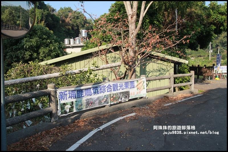 鹿鳴坑觀光果園52.JPG
