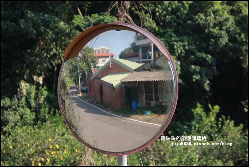 鹿鳴坑觀光果園49.JPG