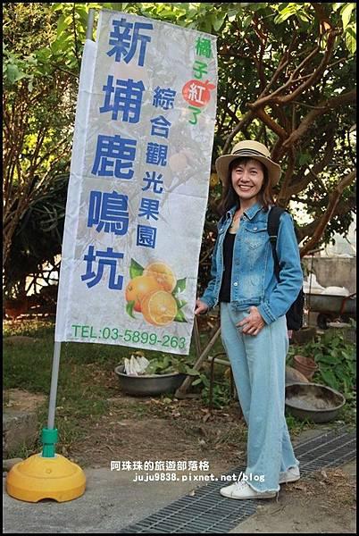 鹿鳴坑觀光果園53.JPG