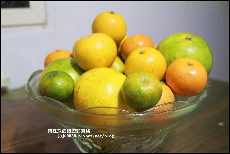 鹿鳴坑觀光果園68.JPG