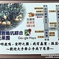 鹿鳴坑觀光果園70.JPG